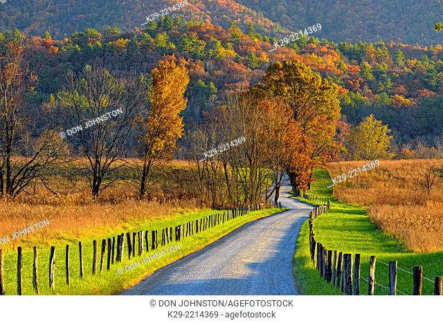 Autumn colour in Cades Cove- Hyatt Lane, Great Smoky Mountains NP, Tennessee, USA