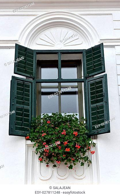 Classic green wooden window shutters and red flowers on a village house
