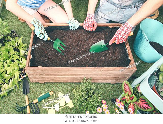 Couple preparing soil to plant vegetables in the container of their urban garden