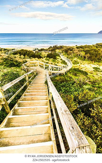 Vertical architectural landscape of a staircase traversing hilly terrain on the way to The Neck Beach, Bruny Island, Tasmania, Australia