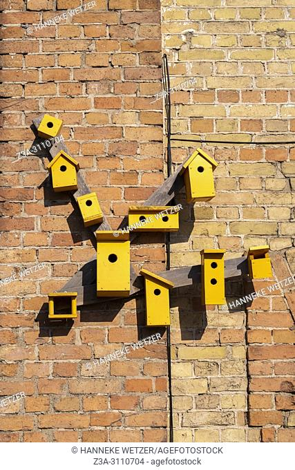 Yellow birdhouses at Spikeri cultural district in Riga, Latvia, Europe