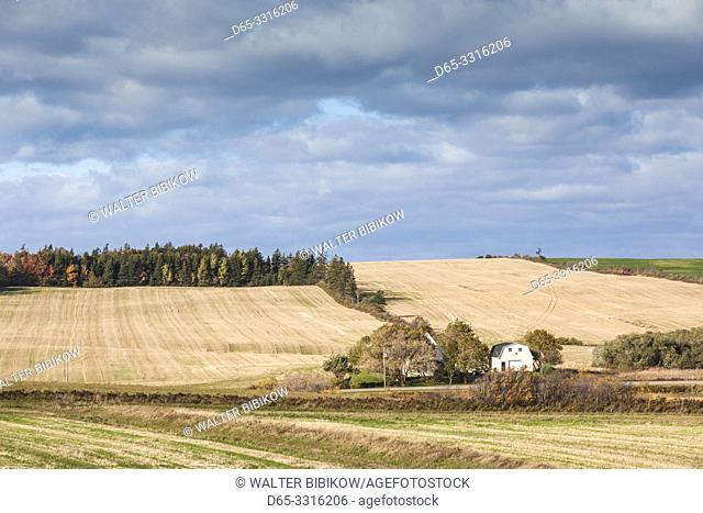 Canada, Prince Edward Island, French River, farm, autumn