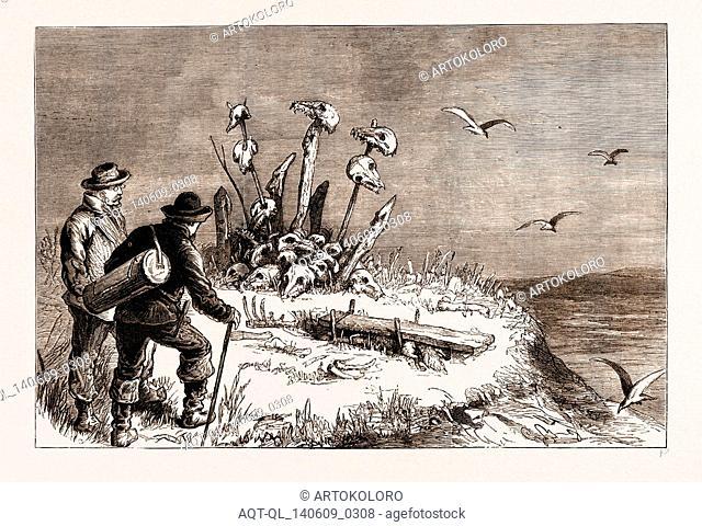 THE SWEDISH ARCTIC EXPEDITION: A SAMOIEDE SACRIFICIAL ALTAR, 1876