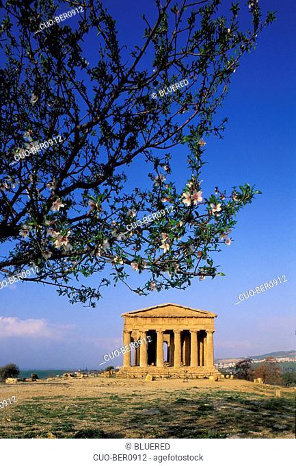 Tempio della Concordia, Agrigento, Sicily, Italy