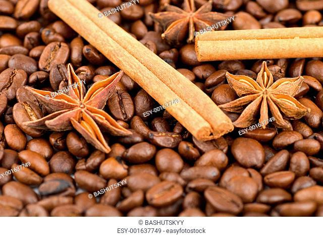 Cinnamon sticks and anise stars on coffee beans