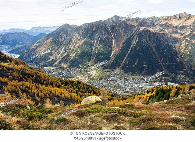 View on Chamonix in the French Alps