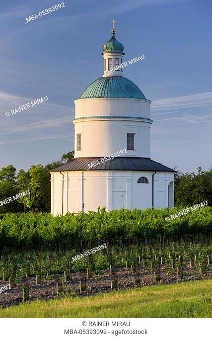 Rochus chapel Marchfeld, Angern, vineyards, Lower Austria, Austria