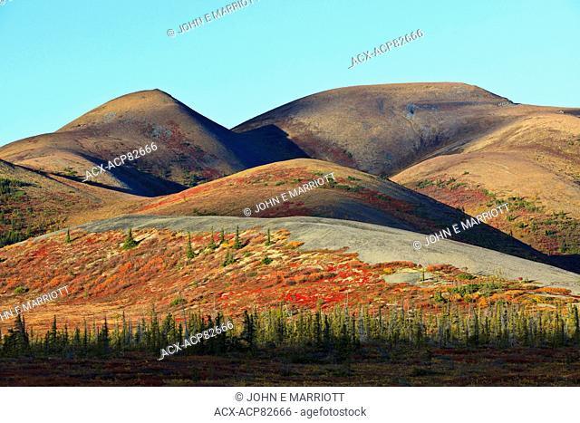 Fall colours in the Richardson Mountains, Yukon, Canada
