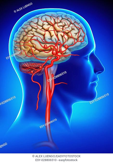 Rendering human head on a blue background with a saccular aneurysm. internal carotid artery