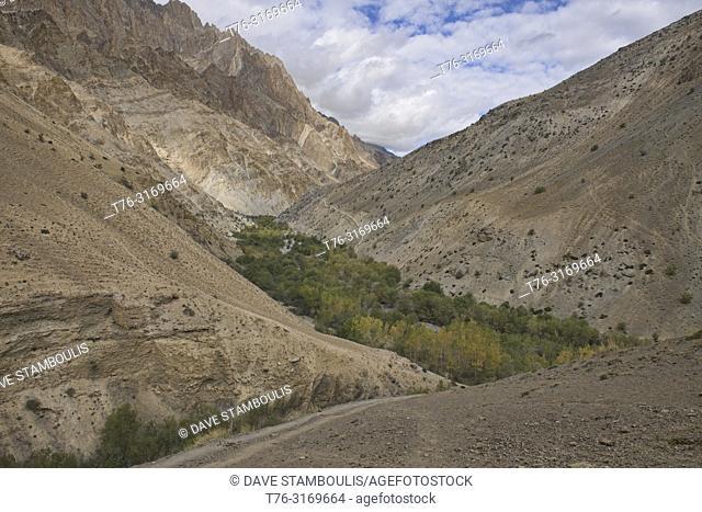 Fall colors in the Zanskar mountains en route to the Dundunchen La Pass, Ladakh, India