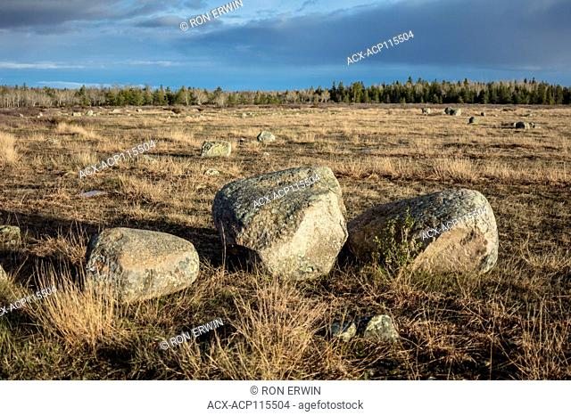 Erratic rocks in grassland Alvar on Barrie Island, Manitoulin Island, Ontario, Canada