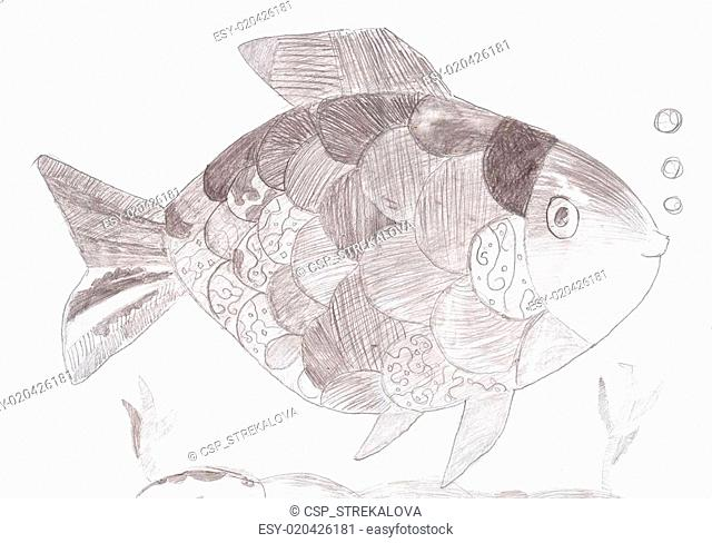 Sketch drawing of a fish