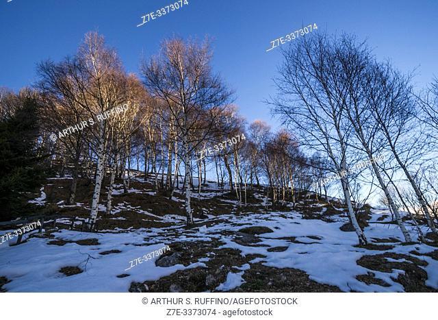 Piani d'Erna (Plains of Erna). Winter landscape. Resort in Monte Resegone (Resegone Mountain). L'Anello del Resegone (The Ring of Resegone)