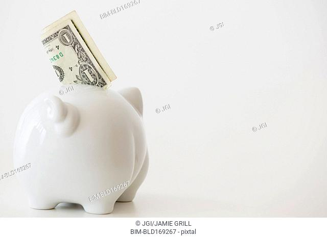 Close up of piggy bank with money