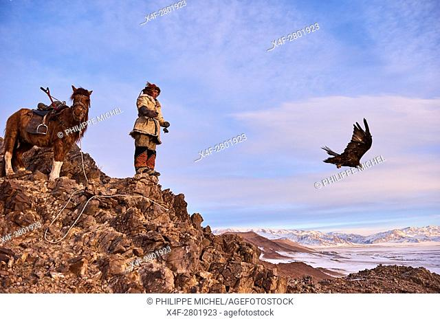 Mongolia, Bayan-Olgii province, Kazakh eagle hunter, Golden Eagle hunting in Altai mountains