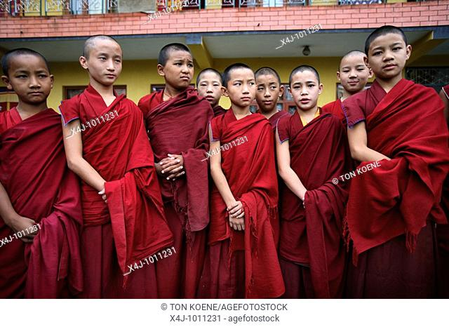 A group of young monks  Buddhist monks are living in monastries in and around Kathmandu  Many are illegal refugees from Tibet but live quietly within the walls...