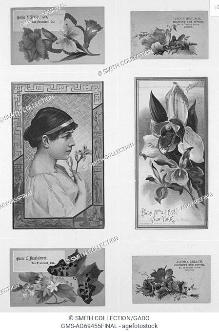 Collection of six advertising cards, all featuring flowers prominently, from left to right, first row, card with flowers and yellow butterfly for Donne and...