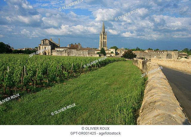 VILLAGE AND VINEYARDS OF SAINT-EMILION AND THE 12TH CENTURY MONOLITHIC CHURCH, SAINT EMILION, (33) GIRONDE, AQUITAINE, FRANCE