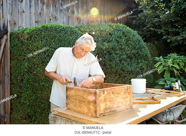 Senior man making wooden crate in garden