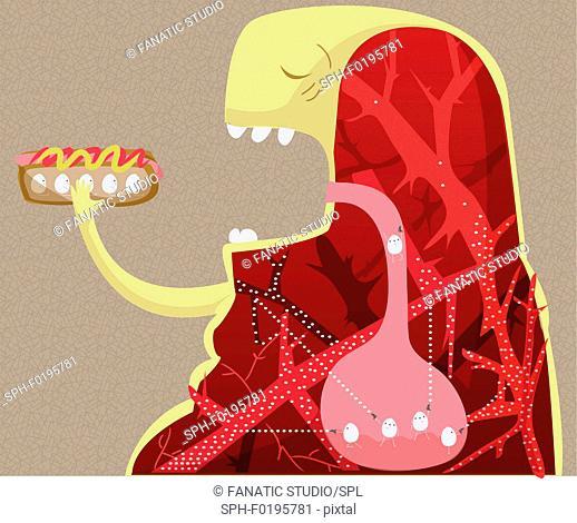 Unhealthy lifestyle, illustration