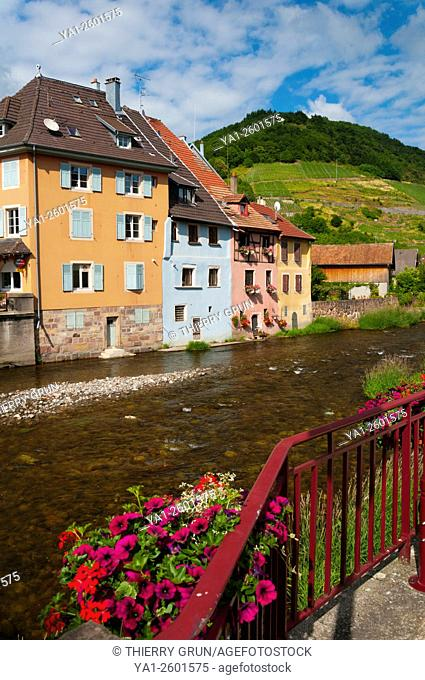 France, Haut Rhin (68), village of Thann, old colored houses on riverbank of La Thur river
