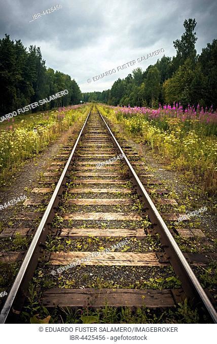 Train tracks, Oleni Ruchi Natural Park, Sverdlovsk region, Russia