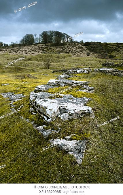 Exposed limestone at the old mine workings at Ubley Warren Nature Reserve in the Mendip Hills near Charterhouse, Somerset, England