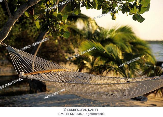 Bahamas, Andros island, South Andros, hammocks and palm trees on the Ecolodge Tiamo Resort Beach
