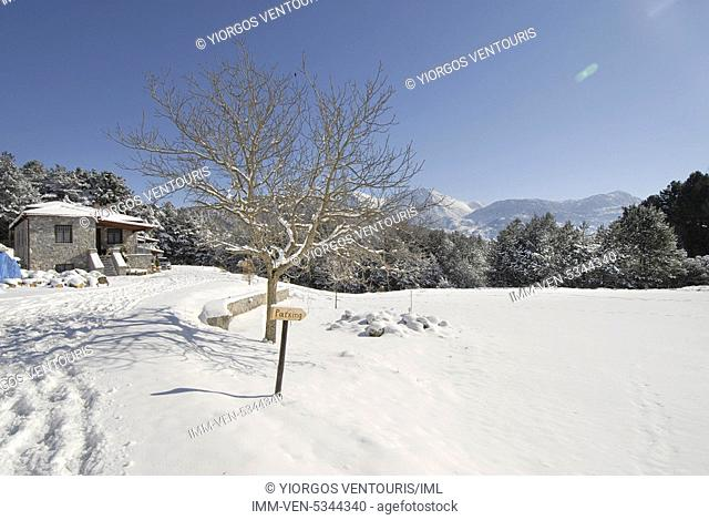 Feneatis hotel in the snow covered village of Feneo. Feneo, Corinthia, Peloponnese, Greece