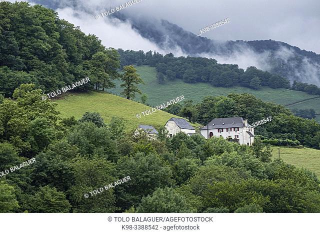 Aspe valley, Aquitaine region, department of Pyrénées-Atlantiques, France