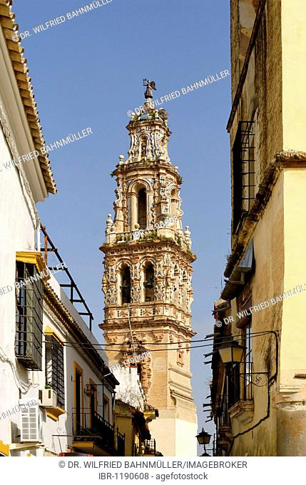 Tower of Santa Ana church with a stork's nest, Ecija, Andalusia, Spain, Europe
