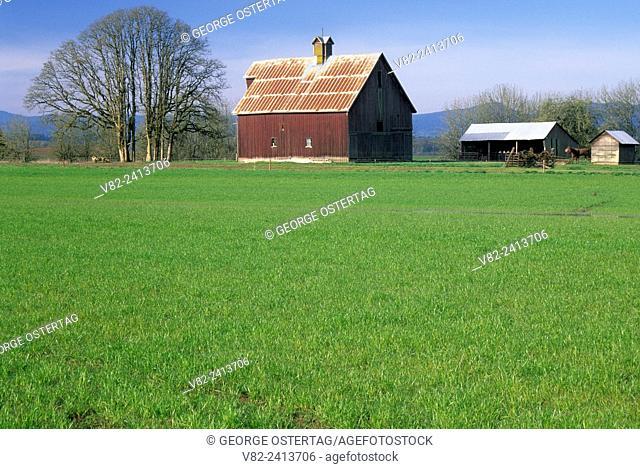 Willamette Valley farmland barn, Benton County, Oregon