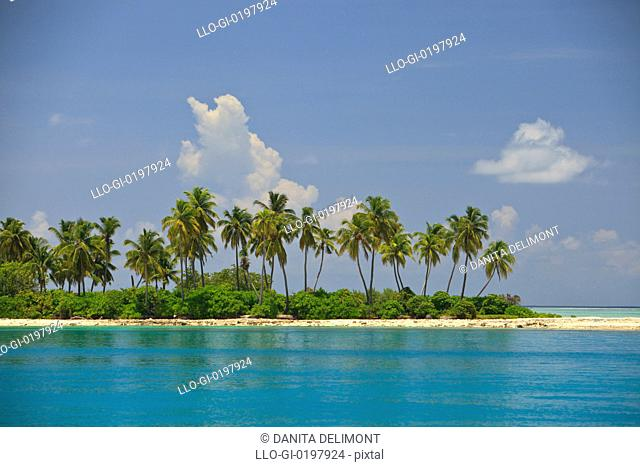 Vilingili Island, Northern Huvadhu Atoll, Southern Maldives, Indian Ocean