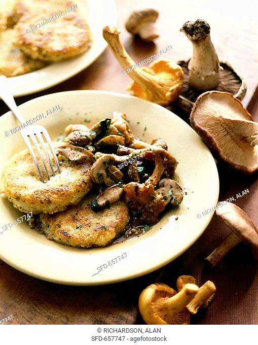 Polenta Cakes with Wild Mushrooms on a Plate with Fork, Mushrooms
