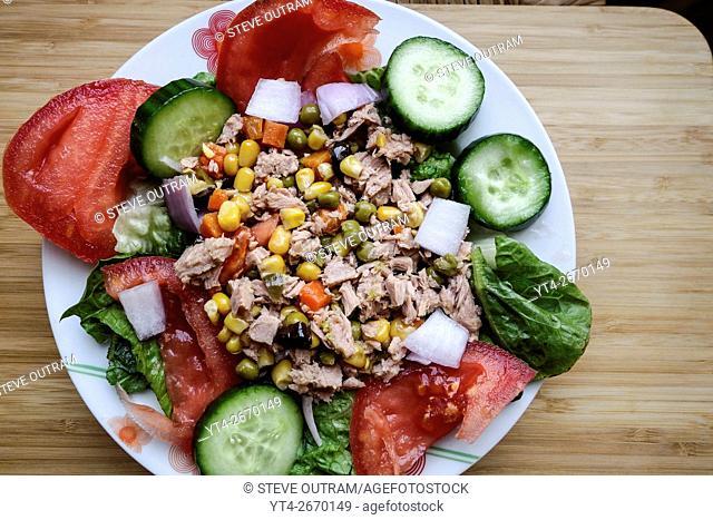 Greek Cuisine. Fresh Tuna Salad