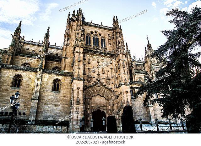 Cathedral of Salamanca (Salamanca, Castilla y Leon, Spain, Europe)