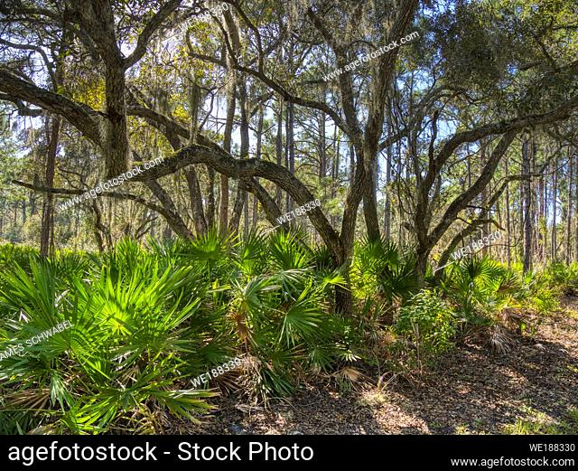 Lemon Bay Park in Englewood Florida, United States