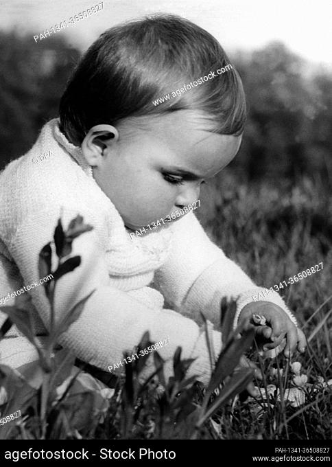 A little child is experiencing the wonders of its first spring while sitting in the grass. | usage worldwide. - /Germany