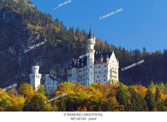 Neuschwanstein Castle in autumn, Fussen, Swabia, Allgau, Bavaria, Germany