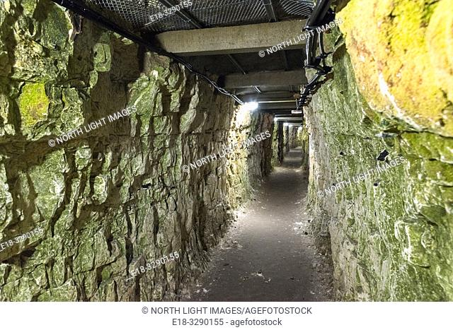 France, Arras, Vimy Ridge Memorial. Permanent display of World War 1 trenches and connecting tunnels. The main combatants were four divisions of the Canadian...