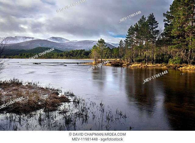Loch Morlich - Cairngorms - Scotland - UK