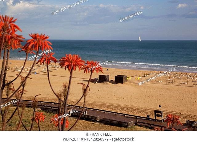 Portugal, Algarve, Praia Da Rocha, Beach & Flowers