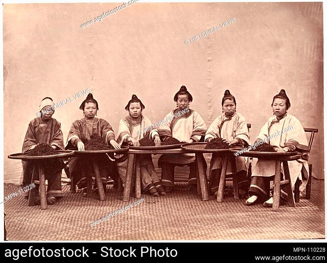 Culling Tea. Artist: Attributed to Lai Fong (Chinese, 1839-1890); Date: ca. 1869; Medium: Albumen silver print from glass negative; Dimensions: Image: 6 15/16 x...