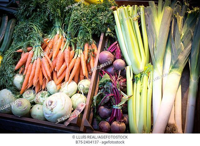 Ecological vegetables box with carrots, kohlrabi, beet, celery and leeks. London, England, UK, Europe
