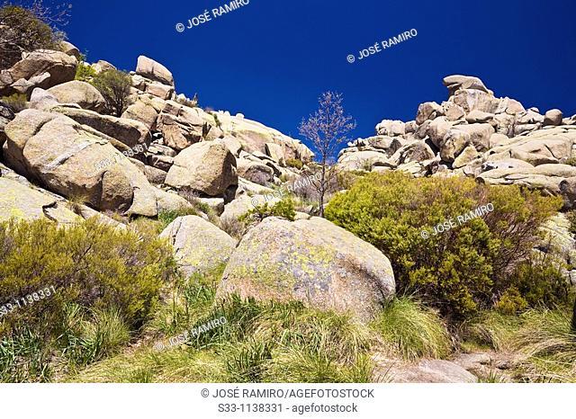Cliffs on the path Maeso The Pedriza Regional Park Cuenca Alta del Manzanares Madrid
