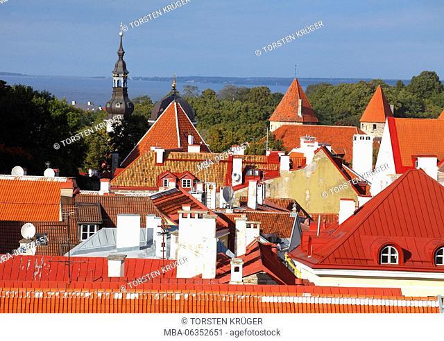 Old Town, roofs, Tallinn, Estonia, Europe