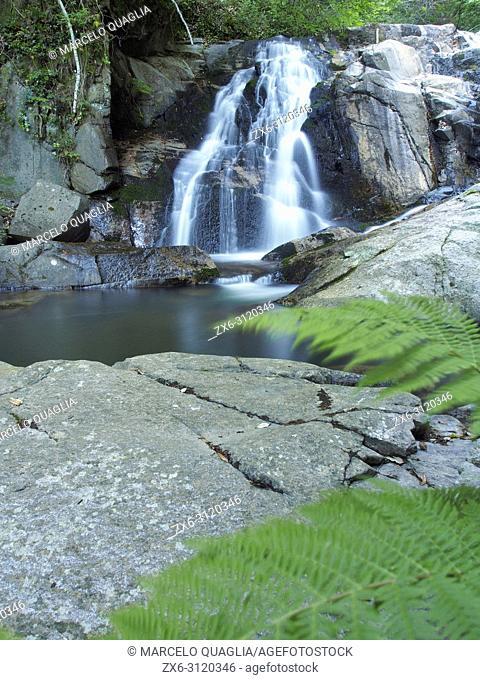 Gualba stream waterfalls at Sesgargantes site. Montseny Natural Park. Barcelona province, Catalonia, Spain