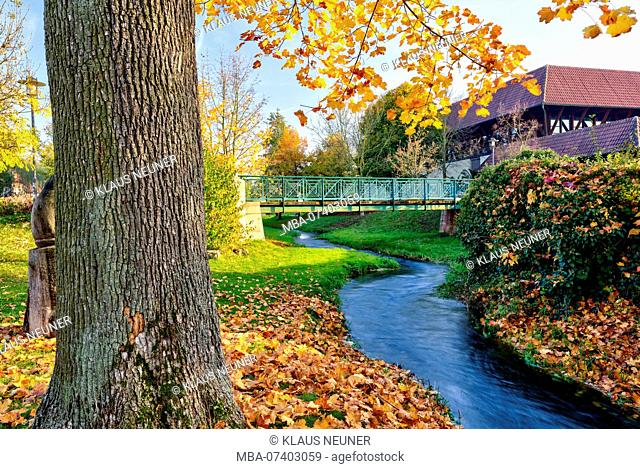 Idyll on the Lauterbach, autumn leaves, Bad Staffelstein, Upper Franconia, Bavaria, Germany, Europe