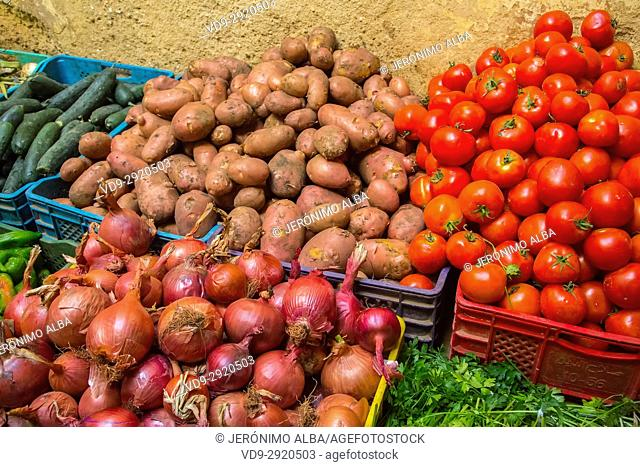 Sale of potatoes, onions, tomatoes, cucumbers and cilantro. Souk Medina of Fez, Fes el Bali. Morocco, Maghreb North Africa