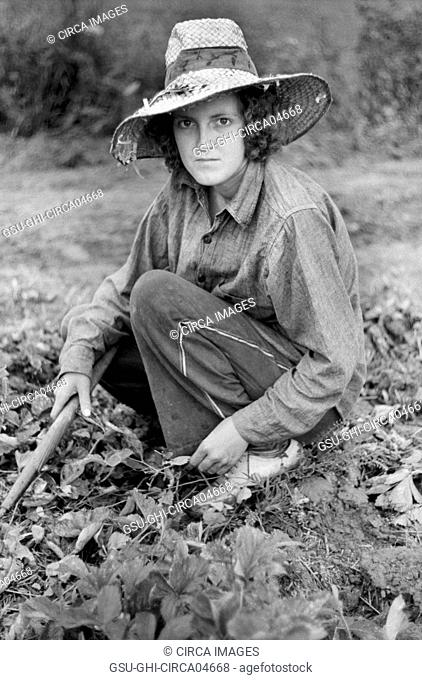 Migrant Worker in Strawberry Field, Berrien County, Michigan, USA, John Vachon for Farm Security Administration July 1940